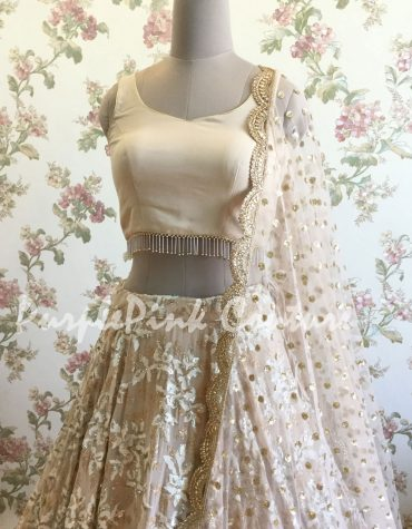Nude Shade Georgette Lehenga Choli with Net Dupatta