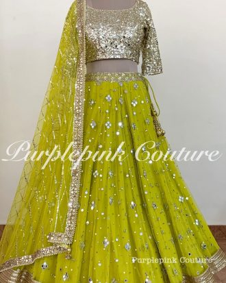 Chandni Hand Embroidered Mirror Work Lehenga Choli