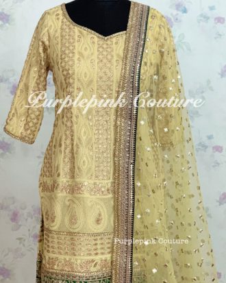 Mia Georgette Lucknowi Thread Work Gota Embellish Suit